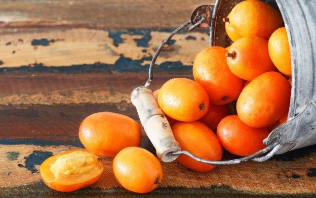 Fonte de fibras, vitaminas e minerais, o cajá é um fruta incrível para a nossa alimentação. Veja os seus principais benefícios!